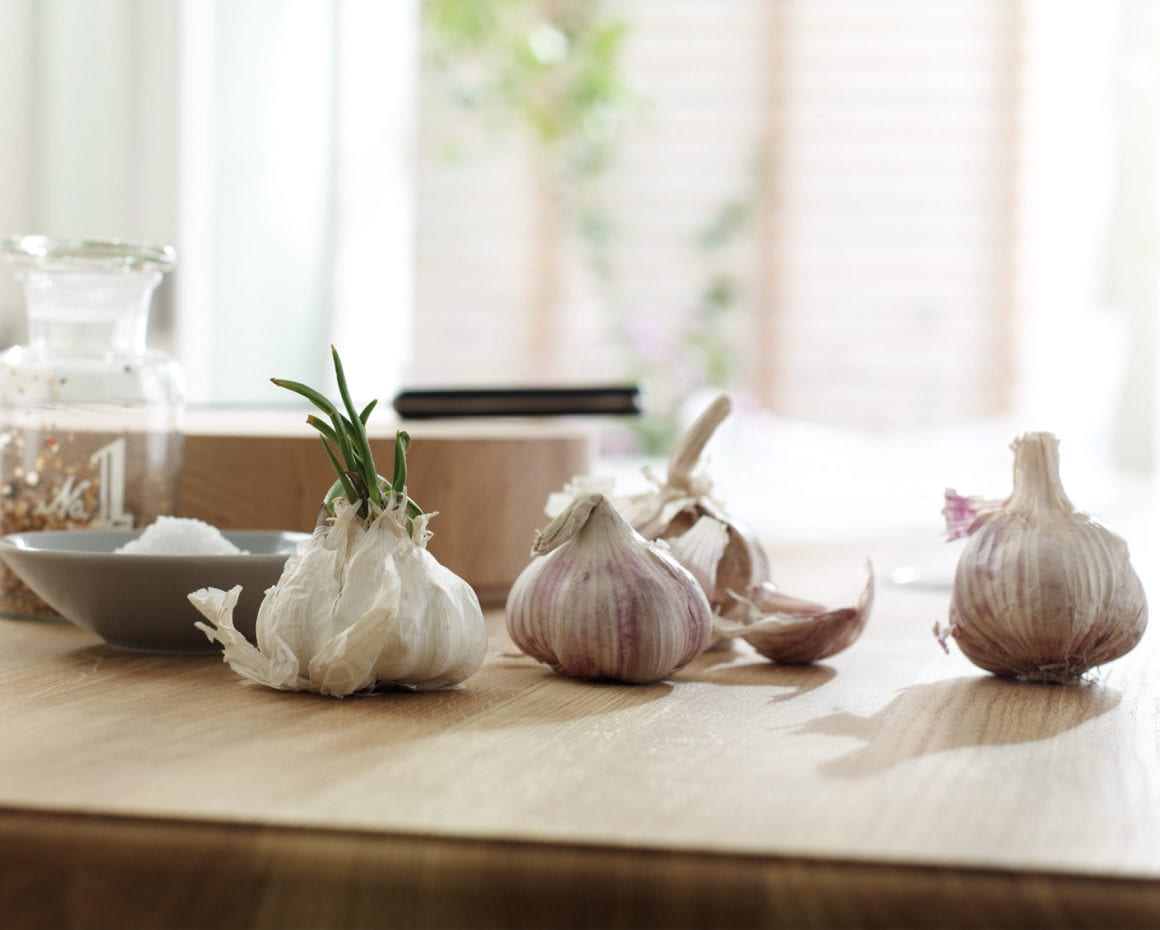 Garlic on kitchen counter